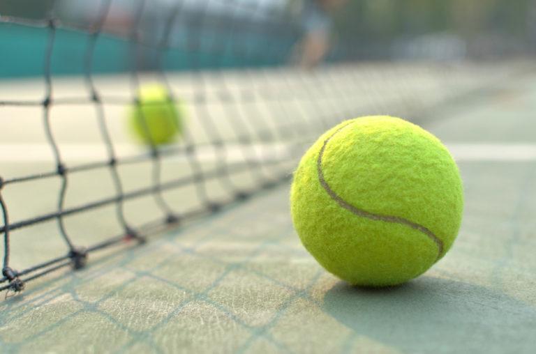 テニスボールダイエットの効果