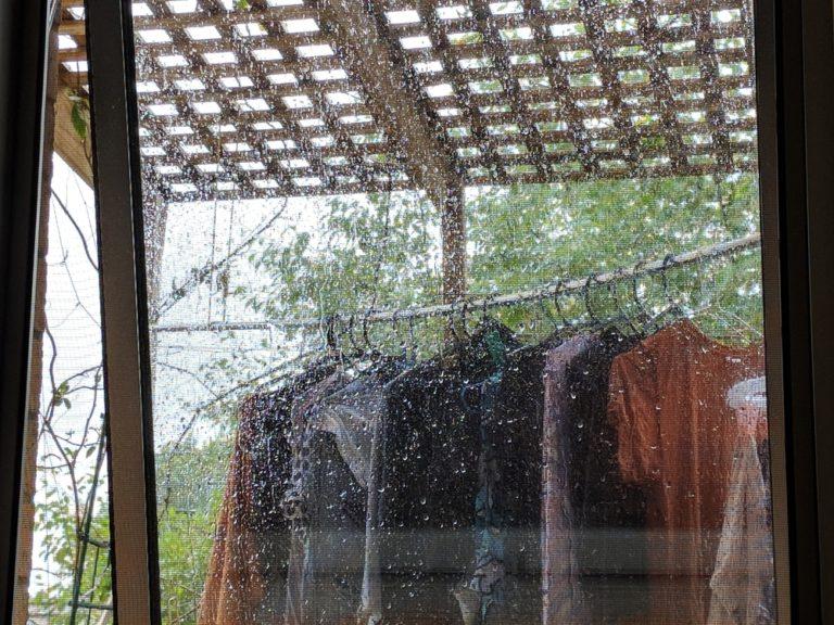 雨の日干された洗濯物